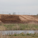 The sand bank at RSPB's Langford Lowfileds three weeks after construction and with new residents.