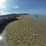sand drawings on the beach