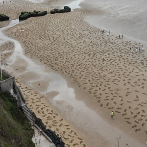 Fallen 9000 sand drawing in France