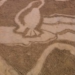penguin sand drawing