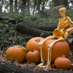 fred the pumpkin skeleton