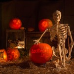 Fred the skeleton joined in the pumpkin carving fun!