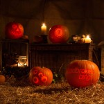 Halloween display with professionally carved pumpkins