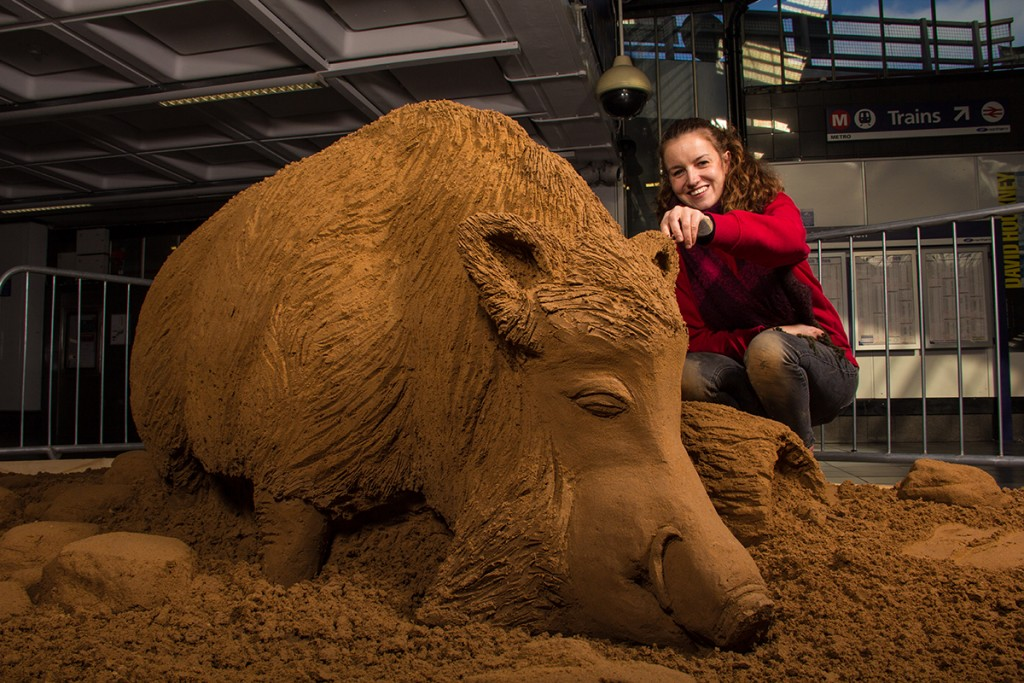 Claire Jamieson sculpting a sand sculpture of Yorkshire's Bradford Boar