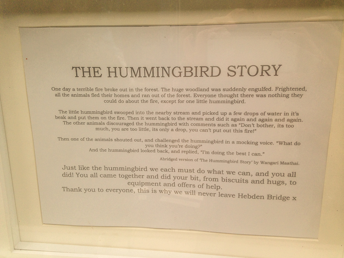 Hummingbird Story in the window of Yorkshire Soap Co.