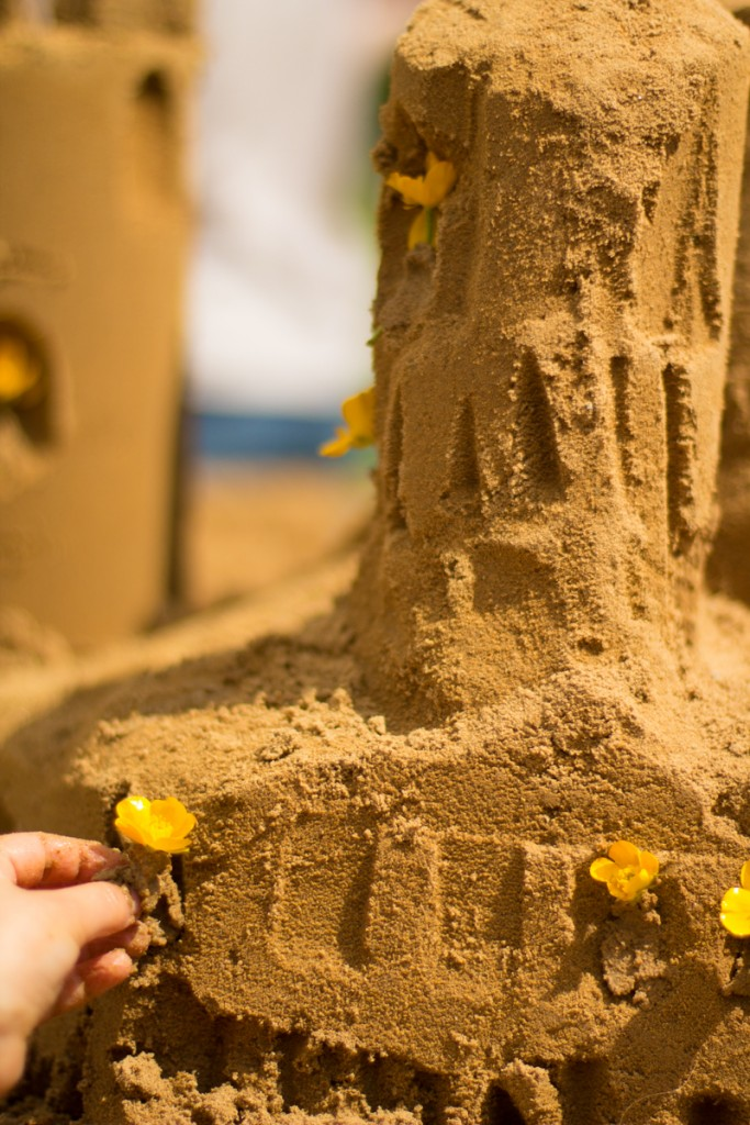 Buttercups in the sand castle