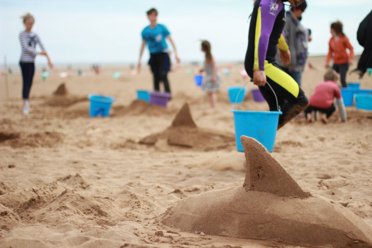 dolphins on the beach, sand sculpture workshops in Skegness