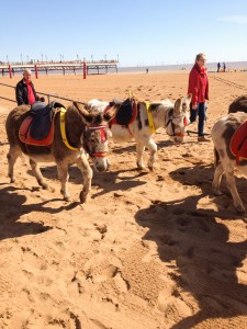 Donkey Rides on the beach in Skegness