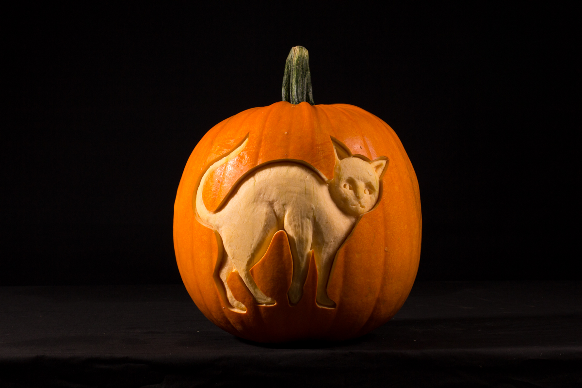 Cat pumpkin carving
