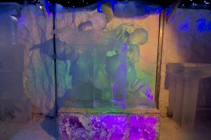 Ice sculptures for displays and events