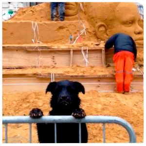 dog_sand_sculpture