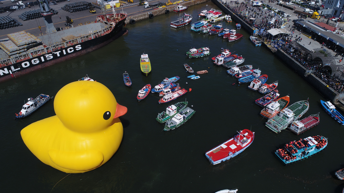 The big yellow duck