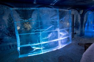 underwater_theme_ice_wall_ice_sculptures_nottingham