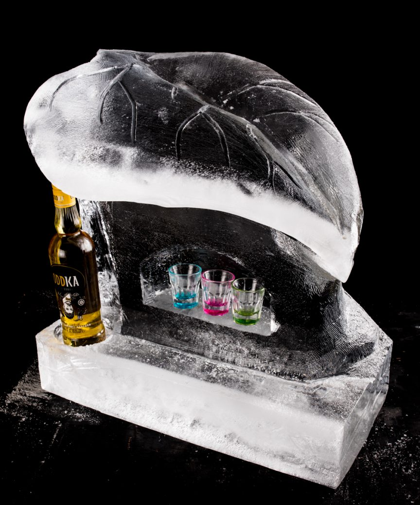 ice luge parties events