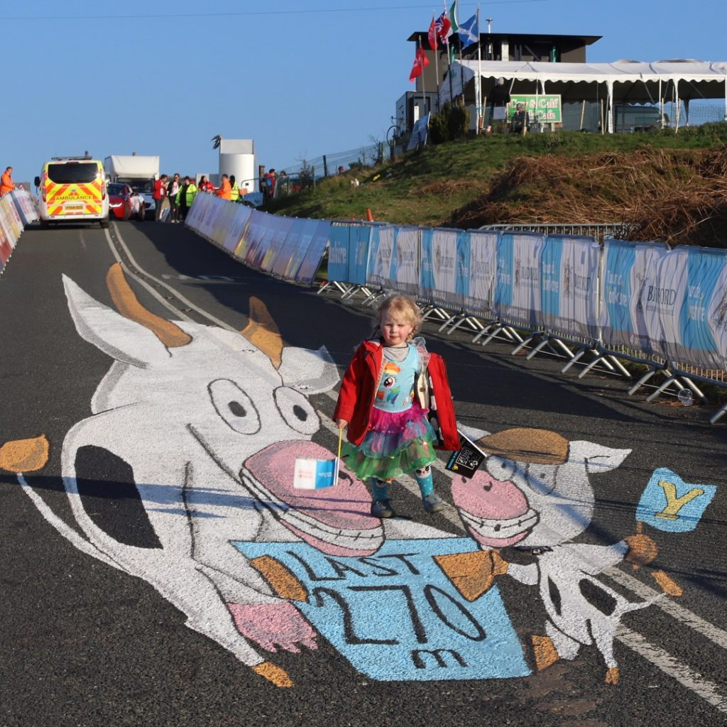 tour de yorkshire cow and calf anamorphic art