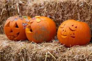 fun things to do with my family october half term