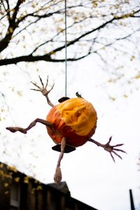 halloween events yorkshire professional pumpkin carving