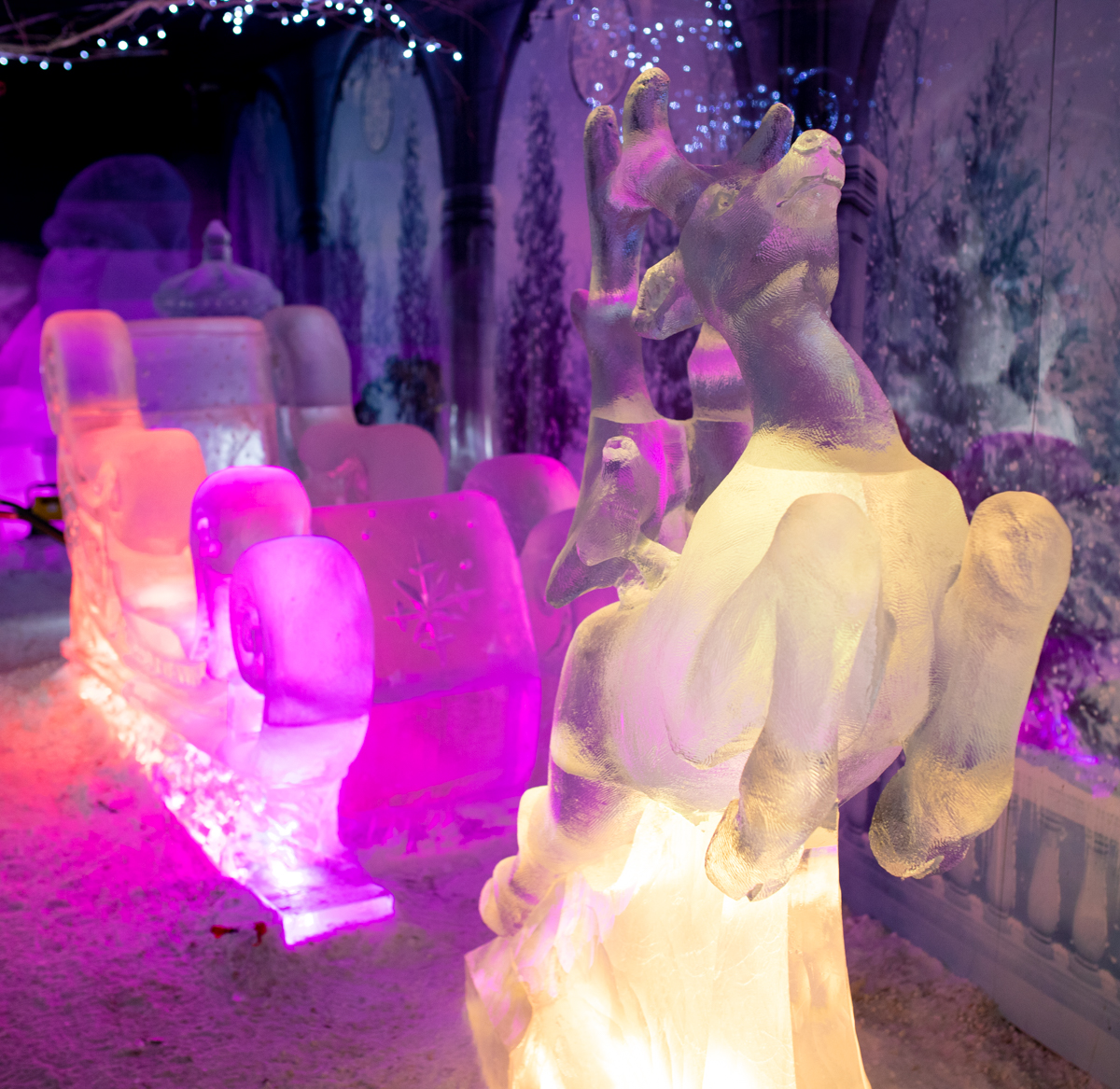 ice sculpture ice bar