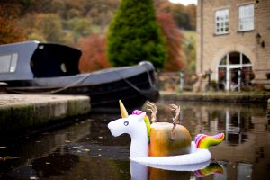 pumpkin festival hebden bridge family events