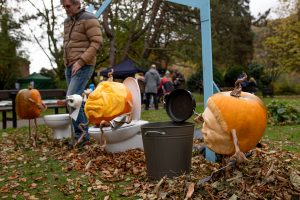 yorkshire water pumpkins days out yorkshire