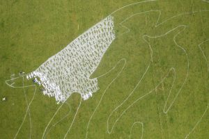 detail of grass painting