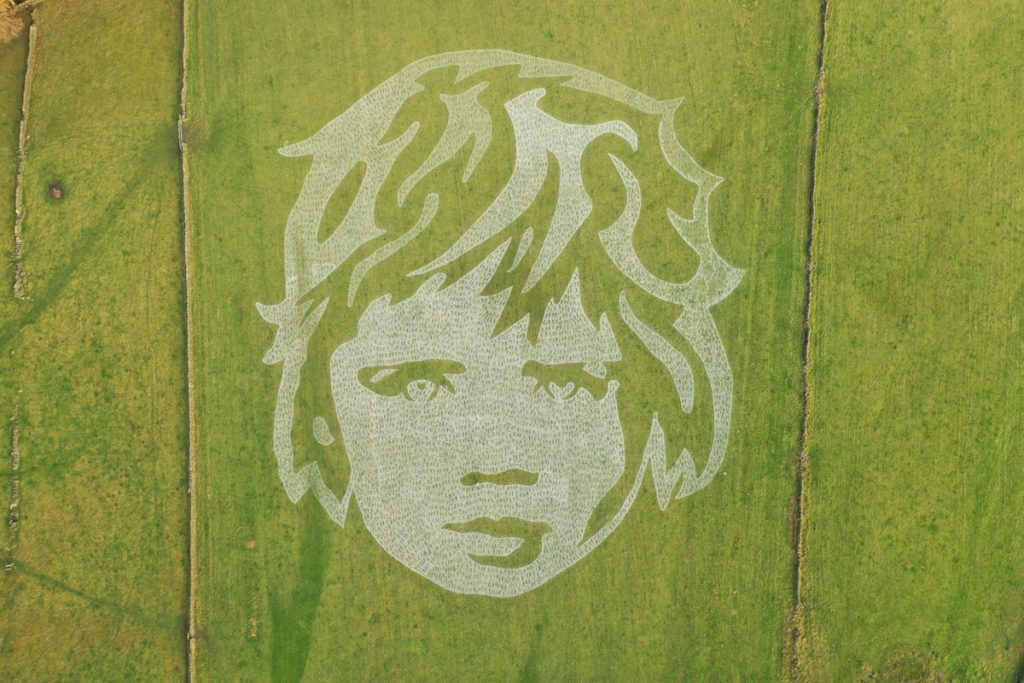 Giant grass painting UK