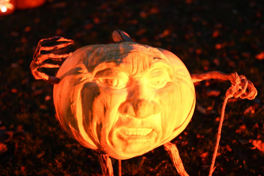 3d pumpkin carving to order