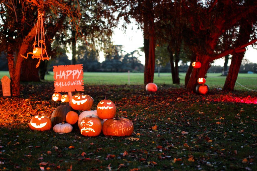 halloween pumpkins blenheim palace